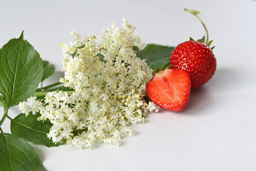 Erdbeer Holunderblüten Konfitüre  (235g)