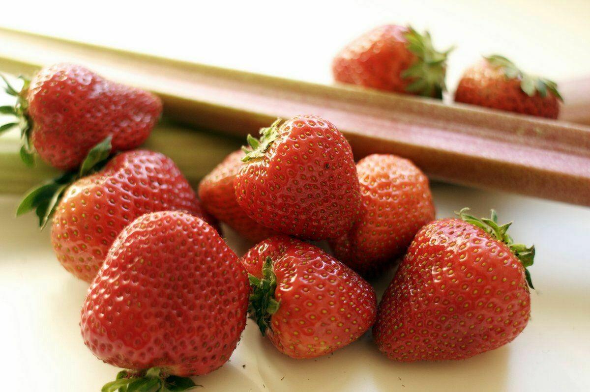 Erdbeer Rhabarber Konfitüre  (235g / 480g)