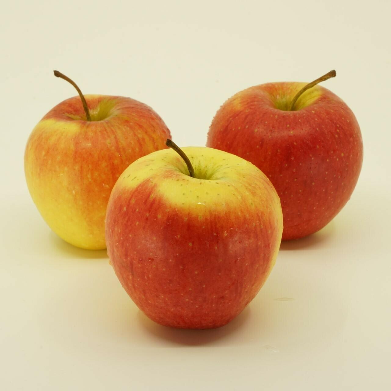 Rigi Äpfel - Braeburn (500g)
