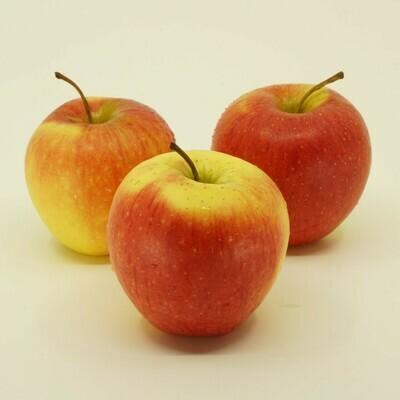 Rigi Äpfel - Idared (500g)