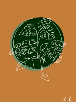 Monstera Houseplant Illustration