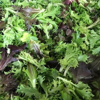 Super Salad Mix - White Barn Farm