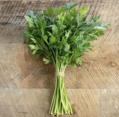 Flat Leafed Italian Parsley - Bunch