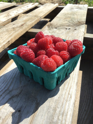 Local Raspberries - 1/2 Pint