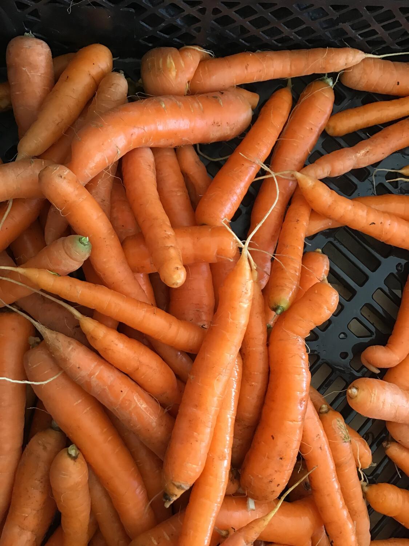 Carrots - Loose- Bag