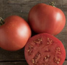 Slicing Tomatoes Quart