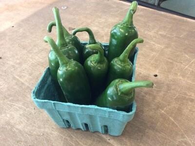 Jalapeño Hot Pepper - Pint