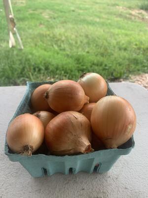 Onions - 2lbs Bag