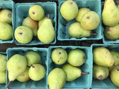Bartlett Pears - Quart