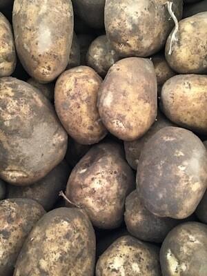 Belmonda Potatoes - Gold - Sparrow Arc Farm