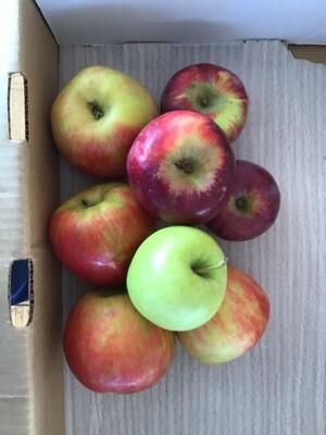 Seconds Apples 5 Lbs