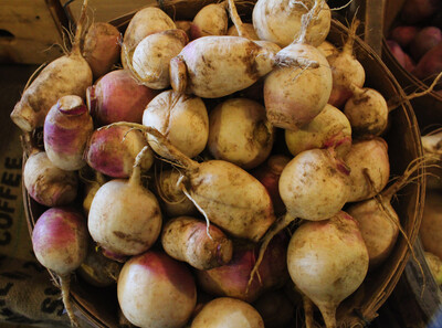 Purple Top Turnips - 2lbs Bag
