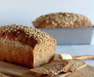 Pan molde semilla