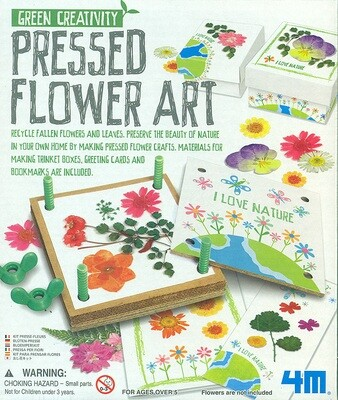 Green Creativity/Pressed Flower Art