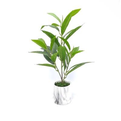 PLANTA ARTIF EN MACETA LHJ4126 Y795