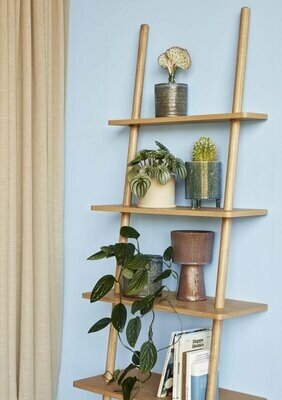 Display ladder, oak, nature