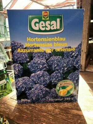 Hortensienblau