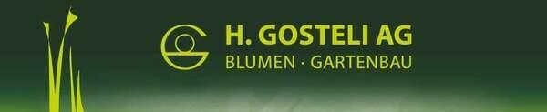 H.Gosteli Online Shop