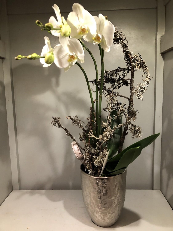 Ausgeschmückte Orchidee