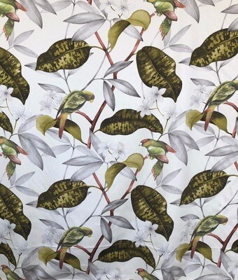 Lilly Bird Fabric By The Yard