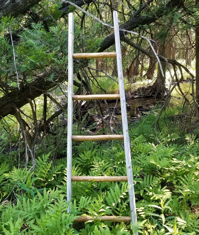 6' Limb Apple Ladders