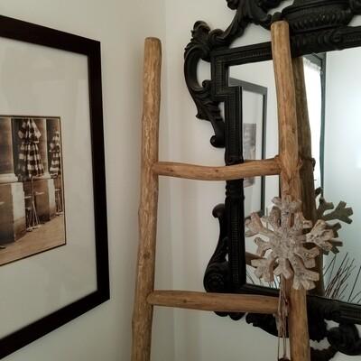 6' Limb Apple Ladder