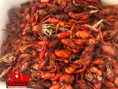crawfish by the pound