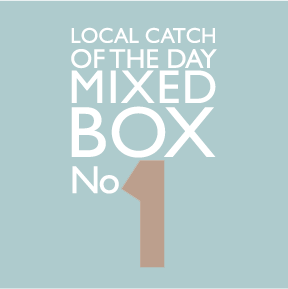Local Catch of the Day, Mixed Seafood Box 1
