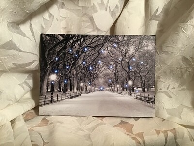 Black and White Lighted Canvas