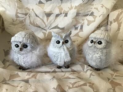 White Snow Owls