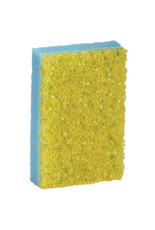 Insect Combi Sponge