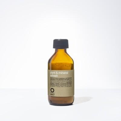 Plant & Mineral Refresh Dry Shampoo