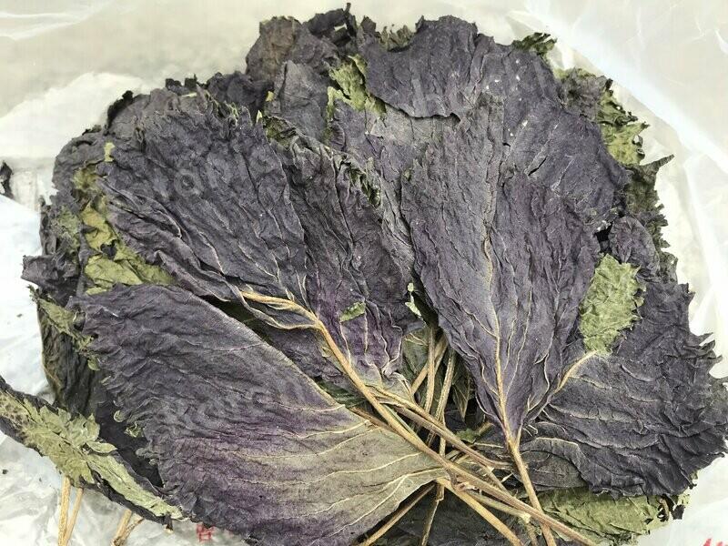 Huo Xiang Zheng Qi tea 30 teabags by Botanical Biohacking