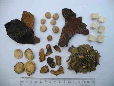 Botanical Biohacking Warm Hearth Er Chen Er Zhu tea 30 teabags