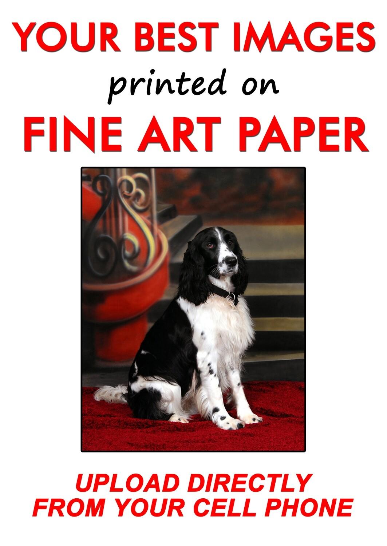 High Quality Photo Enlargements | Fine Art Paper