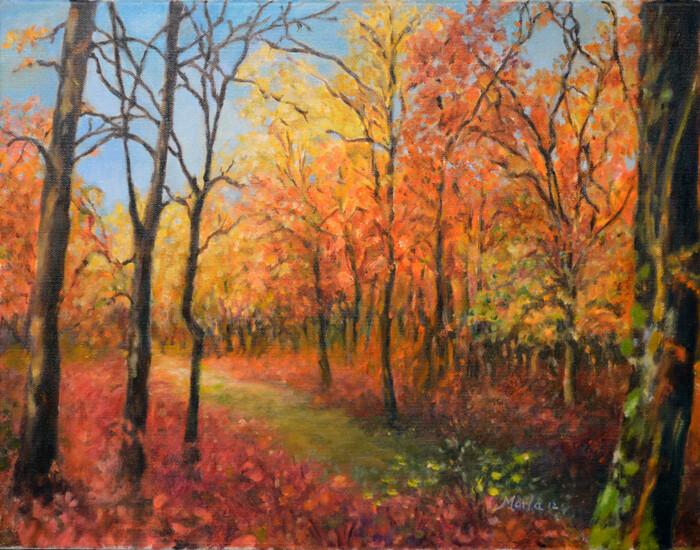 """Fine Art Prints   """"Fall Trail"""""""