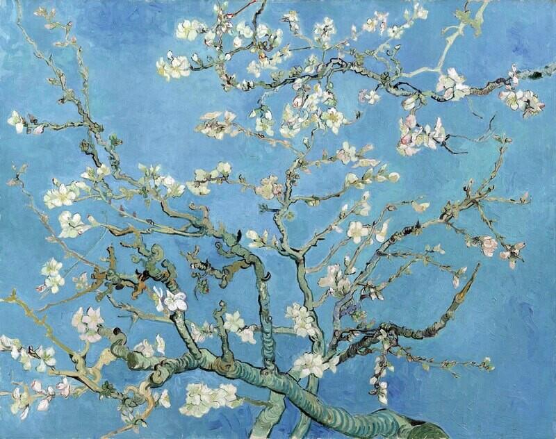 Vincent van Gogh | Almond Blossoms