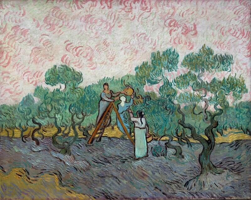 Vincent van Gogh | Women Picking Olives