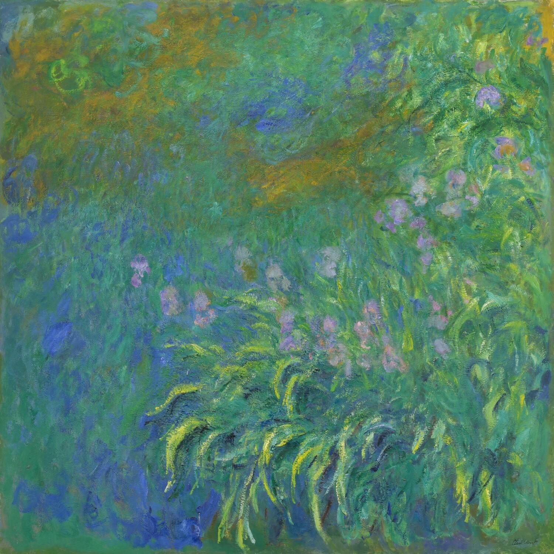 Claude Monet   Irises 1914