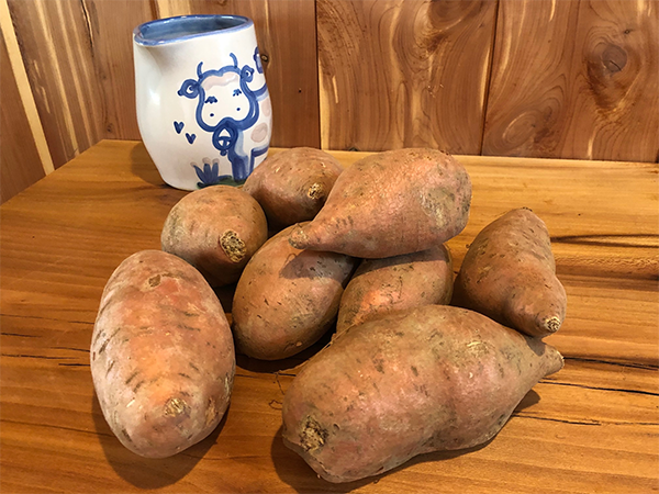 Blue Sky NC Sweet Potato Box 5lb