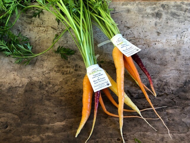 Certified Organic Blue Sky Multi-color Baby Carrots