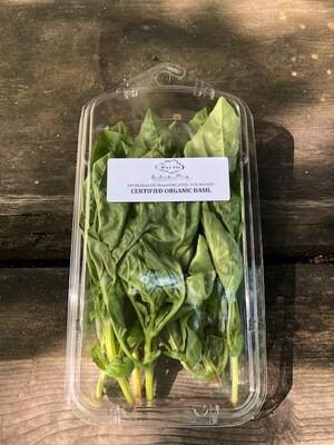 Certified Organic Basil Blue Sky Farms 1 oz