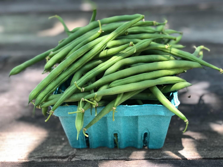 Certified Organic Blue Sky Jade Green Beans ~ 1 lb