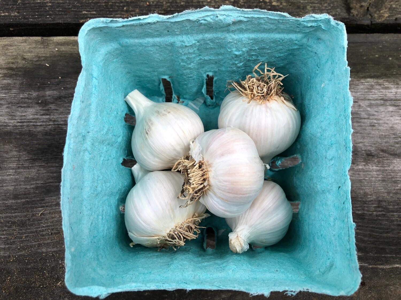 Certified Organic Garlic Rocambole Blue Sky Farms 1/4 lb
