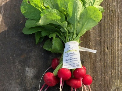 Certified Organic Blue Sky Farms Red Rover Radish with Tops 1 bunch