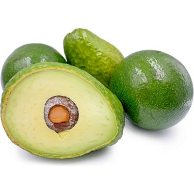 Avocado, 6ct. GREEN