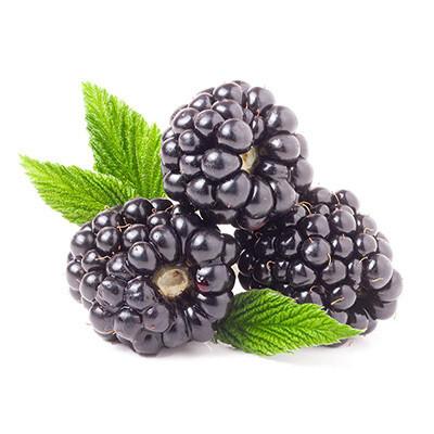 Blackberries, 12-6oz. Driscoll
