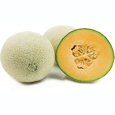 Cantaloupes, 12 Size