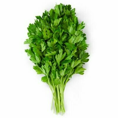 Cilantro, 60ct Bunched