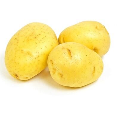 Potatoes, Yukon B 50# Fancy